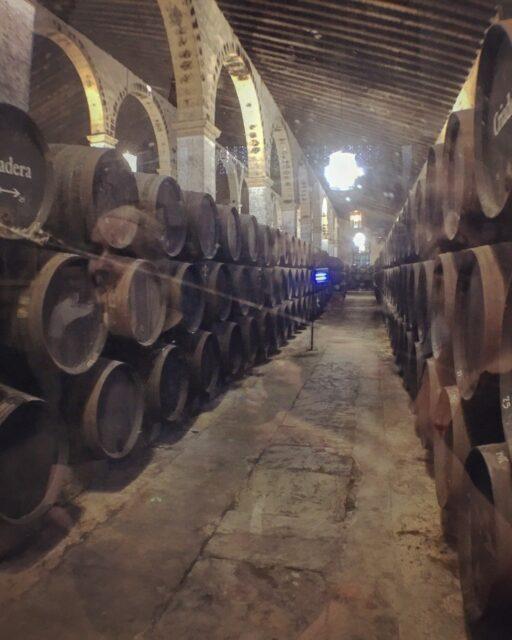 vinos de jerez - criaderas y solera